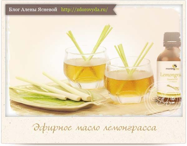 Ефірна олія лемонграсу - кращі способи застосування в медицині і косметології