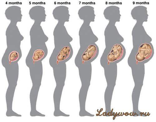 Жінка на різних стадіях вагітності