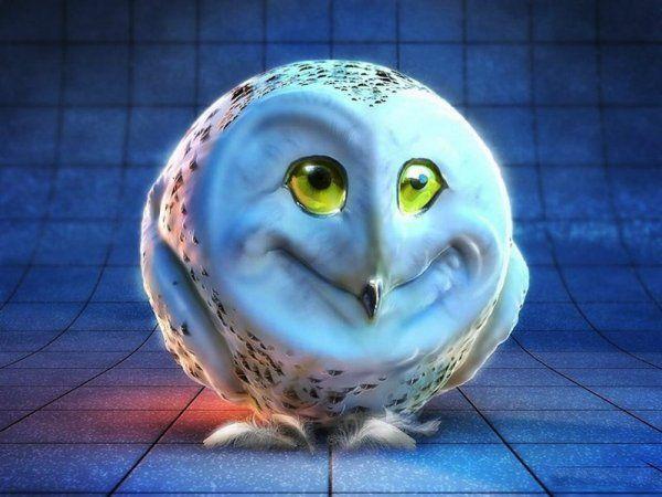 Зачарована весела сова - ава для «ВКонтакте» підніме настрій
